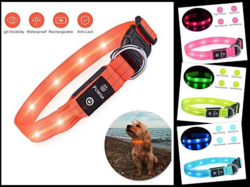 40% OFF LED Dog Collar