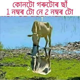 Assamese Funny Puzzle Question