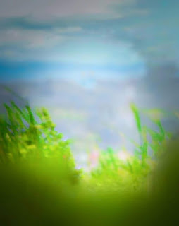 Free Stock Images, Free Stock Photos, Stock Images, nature Background, Blur Background, New Blur Nature Background, Free Stock Background Images