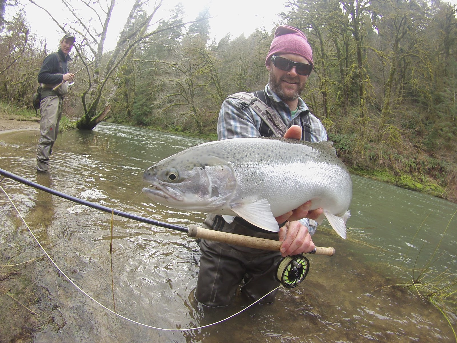 Boston fly fishing and report spring steelhead fishing in for Oregon steelhead fishing