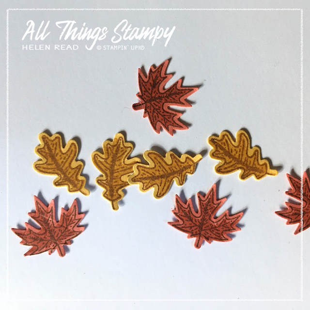 Beautiful Autumn Stampin Up One Sheet Wonder Allthingsstampy Helen Read