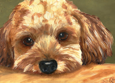 The Look - a beseeching look from a poodle puppy. Painted in oils, impasto by Pet Portraits by Karen