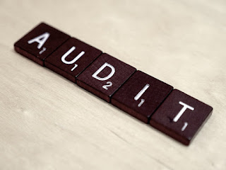 PMI PMP Application Audit Process
