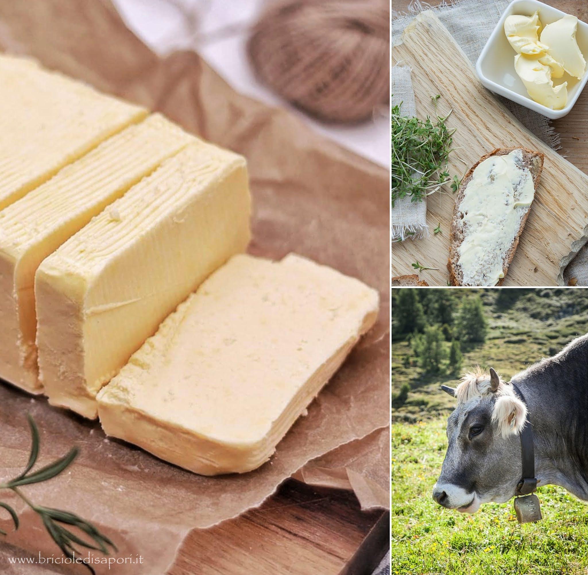 burro di montagna