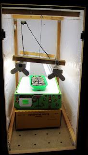 chili 865 leuchtstoffröhre
