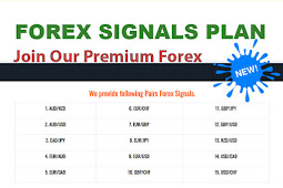 The Forex Trading Signals Service