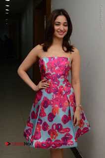 Actress Tamanna Latest Images in Floral Short Dress at Okkadochadu Movie Promotions  0054.JPG