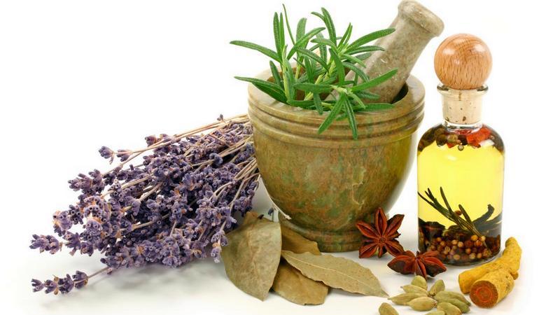 obat herbal, herbal pronunciation, herbal plants and their uses, herbal tea, herbal beauty tips, herbal adalah, herbal synonym, toko herbal