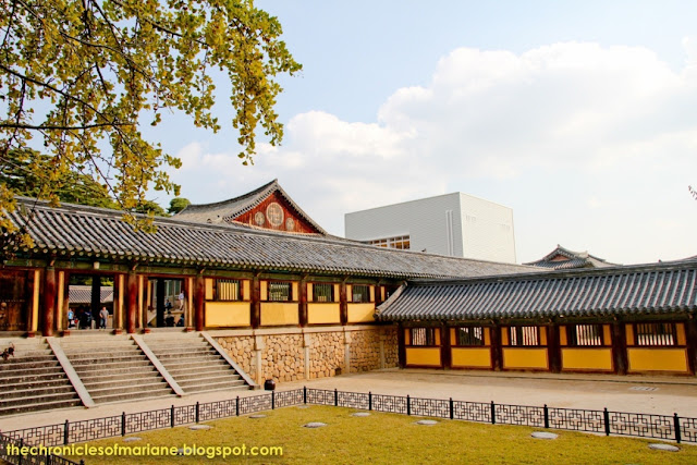 Jeju Day Tour