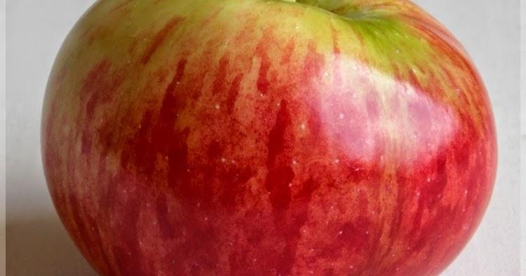 nő alma találkozó