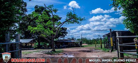 Alcaldía de San José del Guaviare dona lote para  construir nueva sede del SENA | Rosarienses, Villa del Rosario