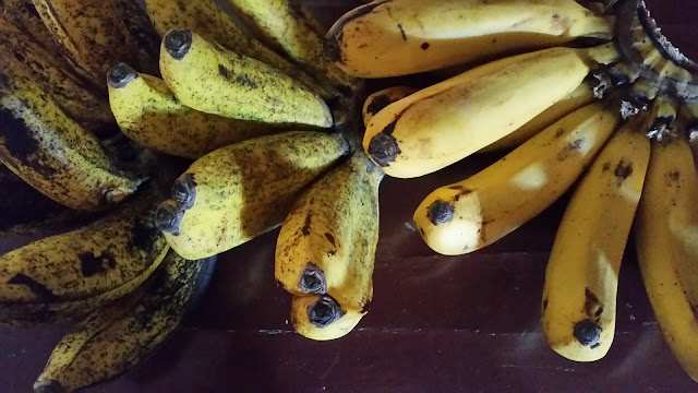 A yellowish cluster of ripe bananas
