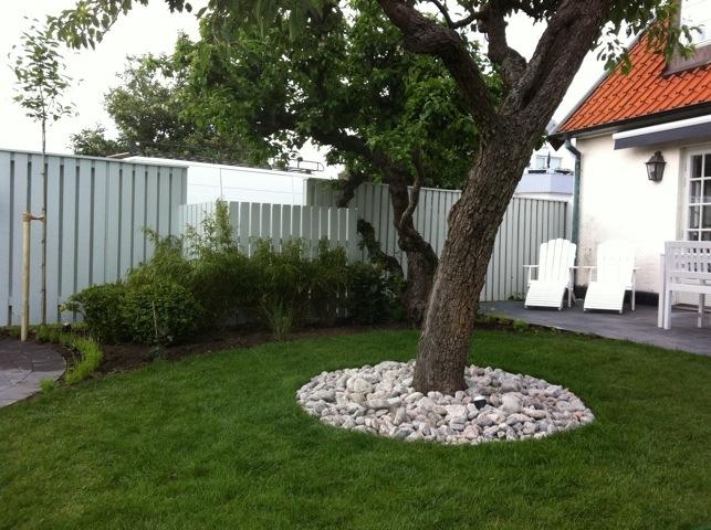vita stenar i trädgården