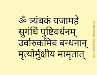 Om Tryambakam Yajamahe - Maha Mrityunjaya Mantra in Hindi text