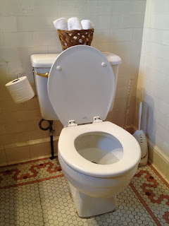 9 awesome Facts About Toilet