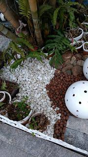 Jardinagem e decoração: pedras, cercas, pneus, orquídeas, vasos