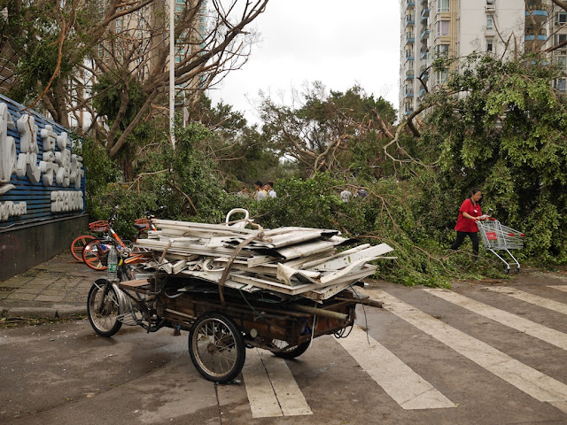 scrap collector cleaning up debris from Typhoon Hato at the Bay Bar Street in Zhuhai