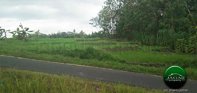 Tanah Sawah Luas jalan Godean Km 17
