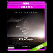 La mula (2018) WEB-DL 720p Audio Dual Latino-Ingles