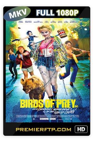 Birds of Prey (2020) WEB-DL 1080p Latino