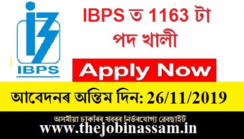 IBPS Specialist Officer Recruitment 2019