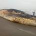Pacasmayo: Mar deja varada a una ballena