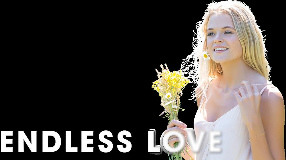 Endless Love 2014 Dual Audio Hindi 720p BluRay