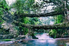 Shillong-Cherrapunji-Mawlynnong Tour (4Nights/5Days)    Day 1 : Guwahati Airport / Railway Station to Shilong  On arrival at Guwahati airport / Rly station welcome to our Representative & transfer to Shillong. On the way visit Umiam Lake/ Barapani lake. Check in Hotel & Rest of the day free at leisure. Night halt at Shillong.    Day 2 : Excursion trip to Cherapunjee  After breakfast excursion trip to Cherapunjee. Visit Noh kalikai falls, DwanSyiem view point, Mawsmai caves, Seven Sister water falls. Afternoon back to hotel & Rest of the day free at leisure. Night halt at Shillong.    Day 3 : Shilong city tour  After breakfast city tour in Shillongvisit Ward's Lake, Botanical Garden, Lady Hydari Park, 18 hole Golf Course, Zoo & The State Museum, Elephant Falls & Shillong Peak. Evening walk at Police Bazar for shoping. Night halt at Shillong.    Day 4 : Excursion trip to Dawaki & Mawlynnong  After breakfast enjoy Dawaki sightseeing visit Dawaki River side & Indo-Bangladesh Border and then visit a magical Paradise-Mawlynnong. The cleanest village of Asia 2003, you can enjoy small trek to visit Living Root Bridge & Machan 85 feet Sky walk. After visit return back to Shillong. Night halt at Shillong.    Day 5 : Shillong to Guwahati airport / Railway Station Drop  After breakfast check out from the hotel and transfer to Guwahati airport / Railway stationfor your onward journey.        Imagica Ticket, Ticket booking in ahmedabad, imagica Ticket, WaterPark Ticket, Imagica, imagica ticket at best price, akshar infocom, TRAVEL AGENT IN GHATLODIA, travel agent in science city, travel agent in sola, travel agent in ahmedabad, air ticket booking center in ahmedabad, air ticket chip, hotel booking, tour package in ahmedabad, 9427703236, 8000999660, akshar infocom  International Air Tickets || Domestic Air Tickets || Cruise Booking || International& Domestic Packages || Hotel Booking World Wide ||  Visa Services || Passport Services || Overseas Travel Insurance || Railway Ticket |