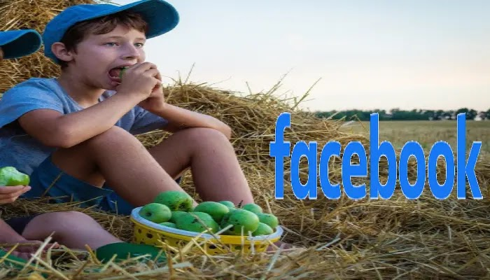 انشاء حساب  فيس بوك جديد علي  الانترنت بخطوات سهله للغاية  facebook create new