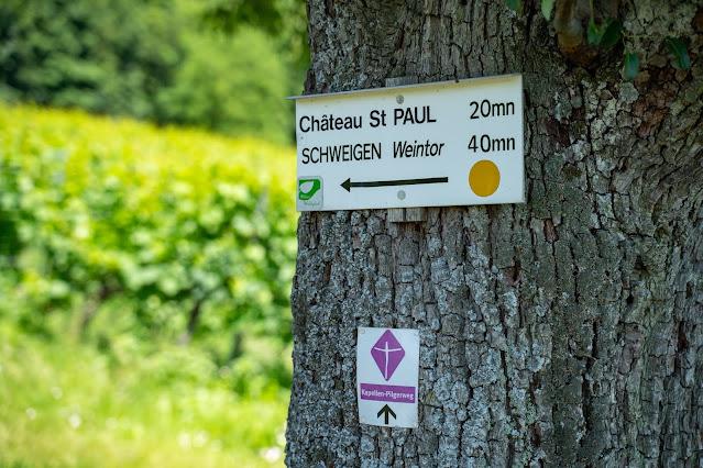 Grenzlandtour Schweigen-Rechtenbach   Bad Bergzaberner Land   Wandern Südliche Weinstraße 21