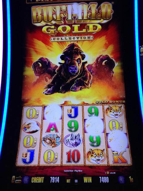 Buffalo Gold Bonus Round Jackpot