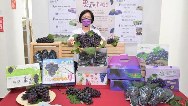 彰化葡萄產量全台第一 線上採買彰化優鮮力挺農友