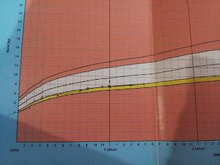 Image result for graf buku kesihatan anak