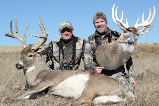 giant whitetail with decoy