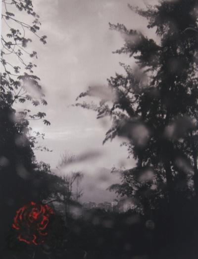 125 Flores