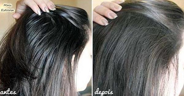 tratamento caseiro para cabelos oleosos