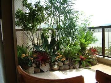 Plantas para varanda: quais as melhores, como cultivar em vasos e mais!