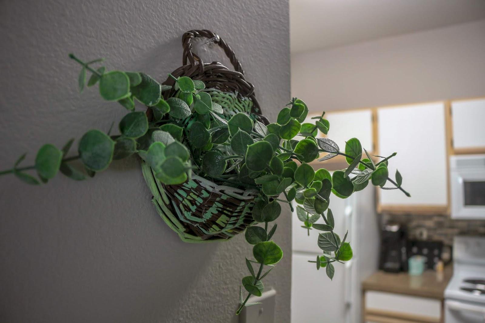 DIY Boho hanging basket planter
