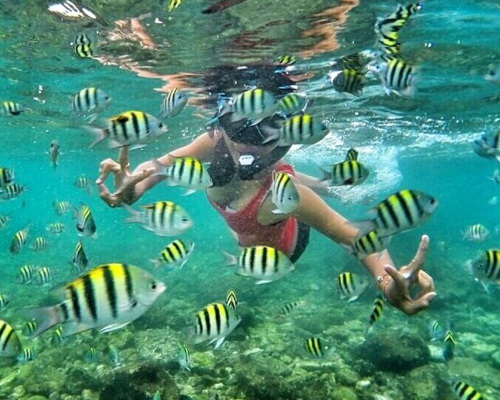 Tinuku.com Nglambor beach in Gunung Kidul as snorkeling paradise in Indian Ocean atoll lagoon as natural aquarium