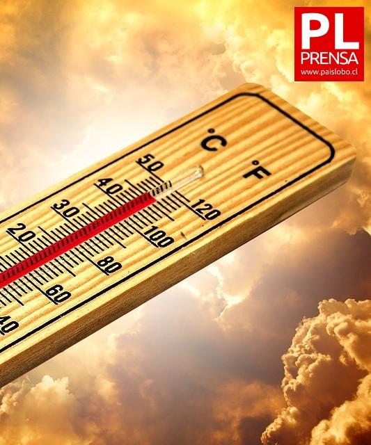 Ola de calor mata a más de 500 personas ▶️ ARDD Podcast 940