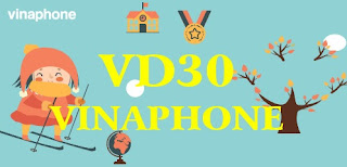 Gói VD30 Vinaphone