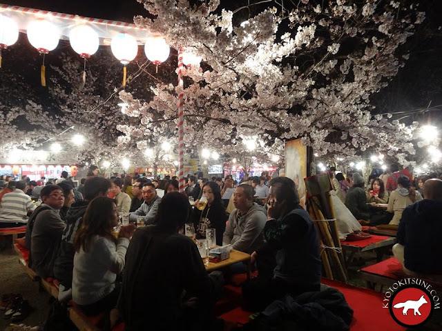hanami au centre de kyoto de nuit