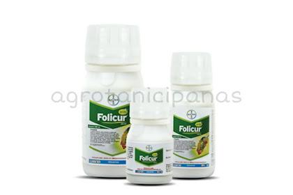 Tingkatkan Panen Padi Menggunakan Fungisida Folicur Gold 430 SC