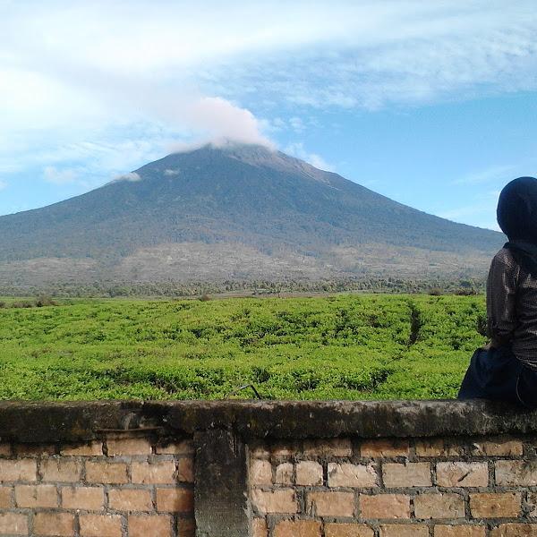 Perjalanan ke Gunung Kerinci (3805 Mdpl)