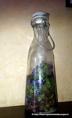 Fleurs de bourrache en bouteille