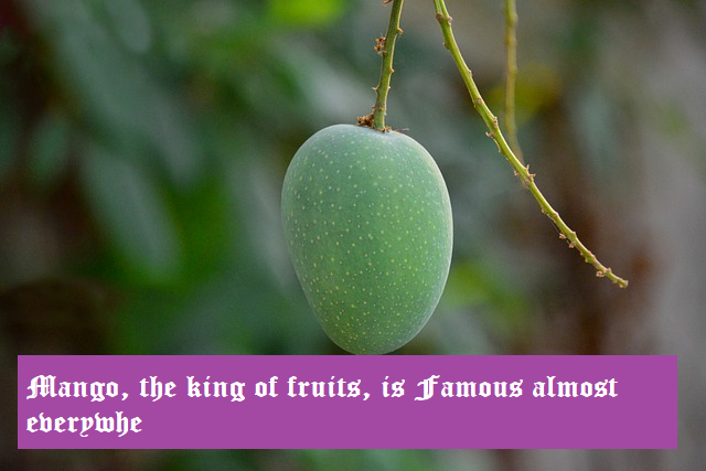 Mango, the king of fruits, is famous almost everywhere.