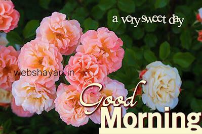 good morning wallaper hd images
