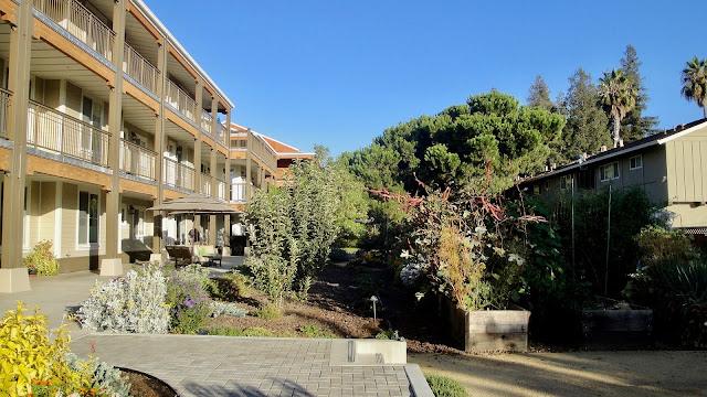 abitazioni collaborative-co housing-anziani-giardino