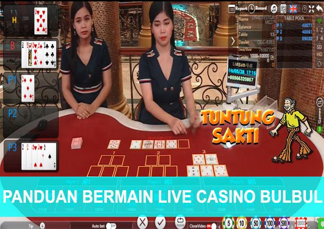 PANDUAN BERMAIN LIVE CASINO BULBUL