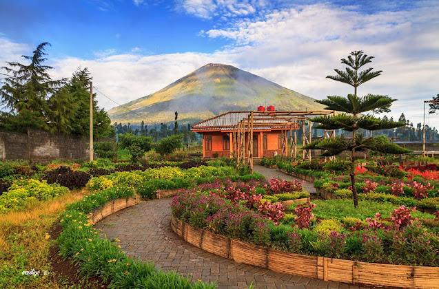 Kledung Park Gunung Sindoro